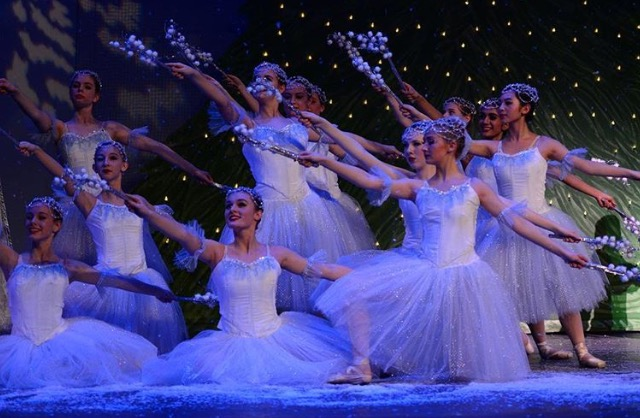 The Ballet Arts Ensemble in the previous performance of the Nutcracker during the 2015~16.
